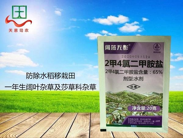 65%2甲4氯二甲胺盐—阔莎无影